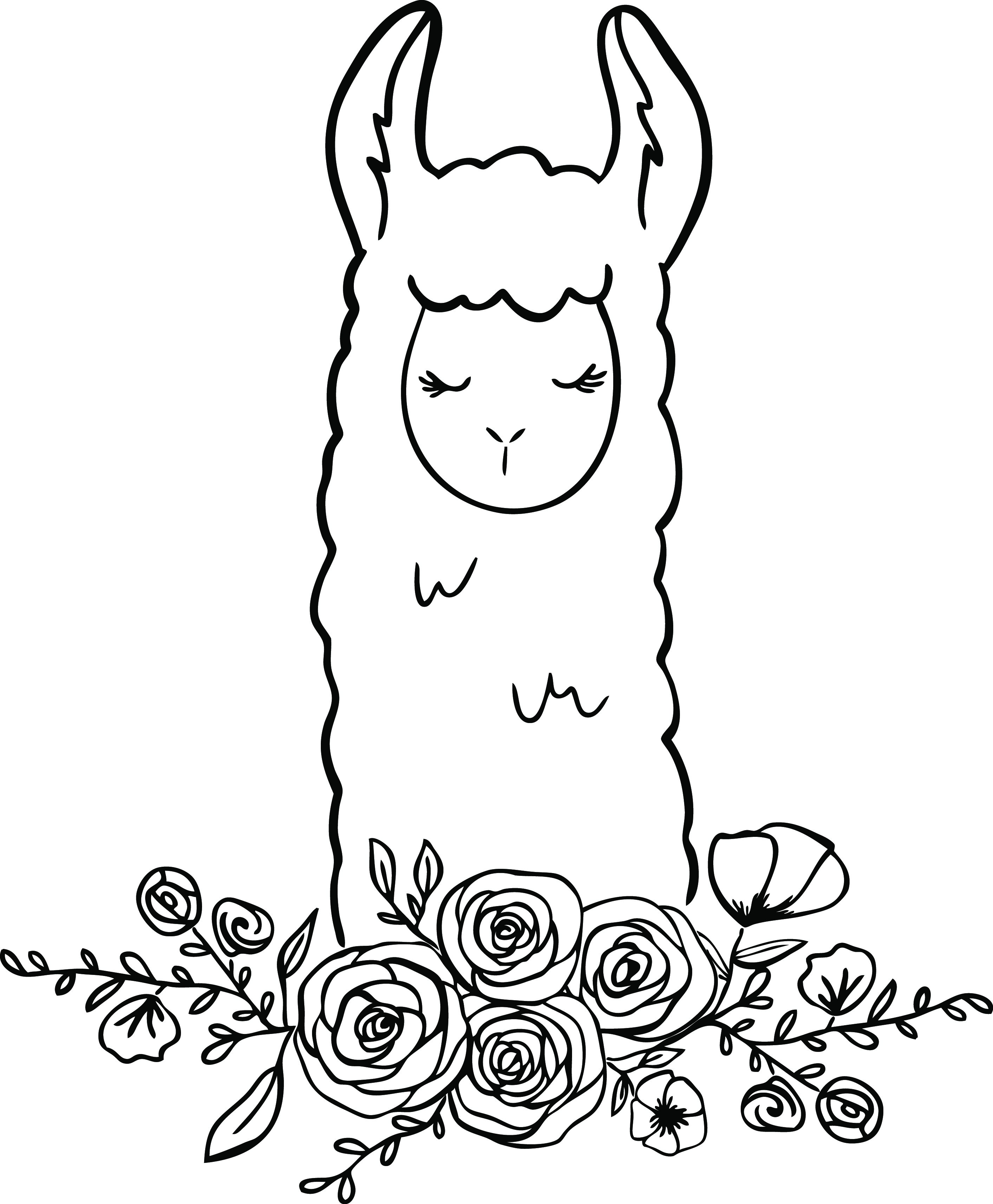 llama floral